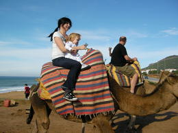 Camel ride in Morocco. , Erkki L - November 2011