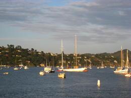 Lots of sail boats, Patricia P - June 2011