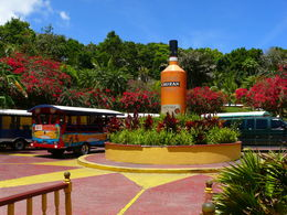 Sunny's bus is the brightly colored red one to the left. , Robby B - April 2015