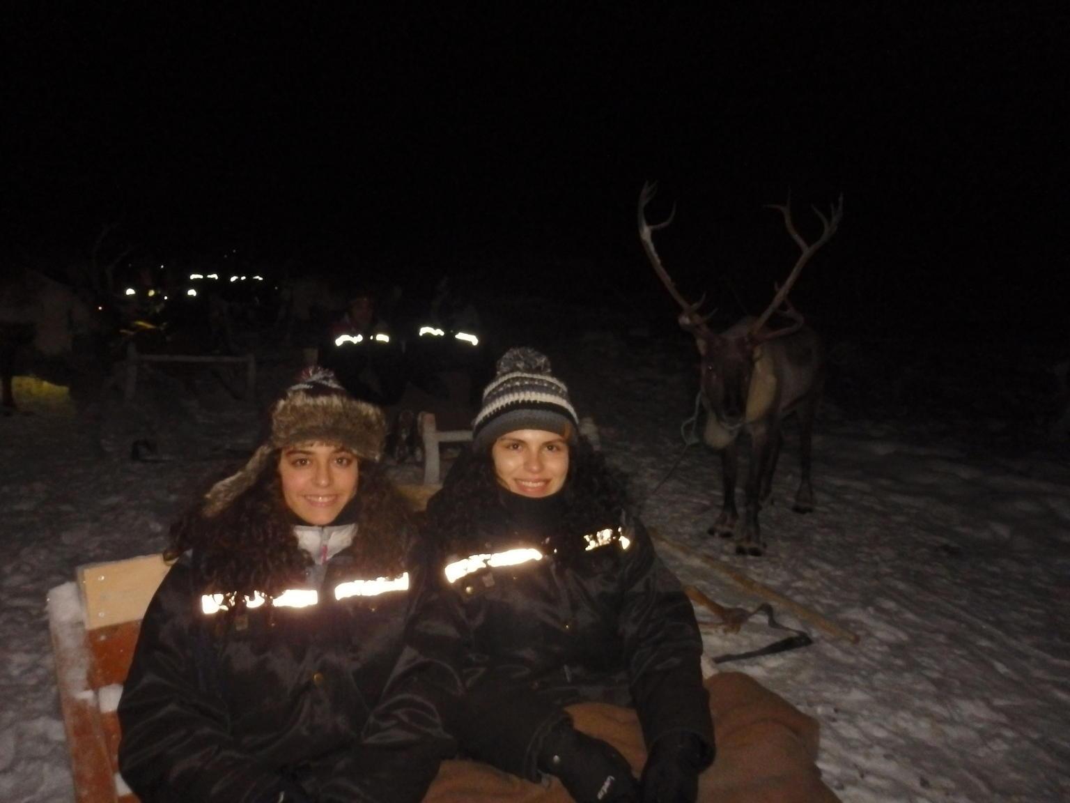 MÁS FOTOS, Northern Lights and Reindeer Sledding in Tromso