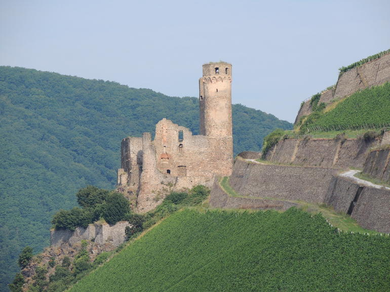 Castle Ruins - Rhine River