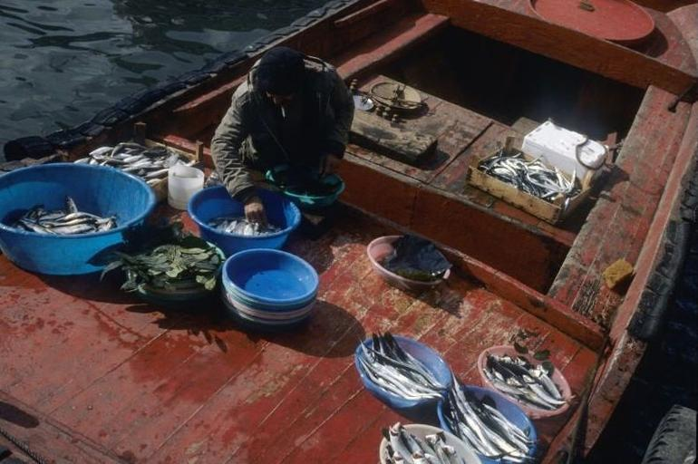 Fish for Sale - Istanbul - Istanbul