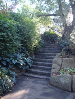 Staircase in the Royal Botanic Gardens , Leah - May 2011