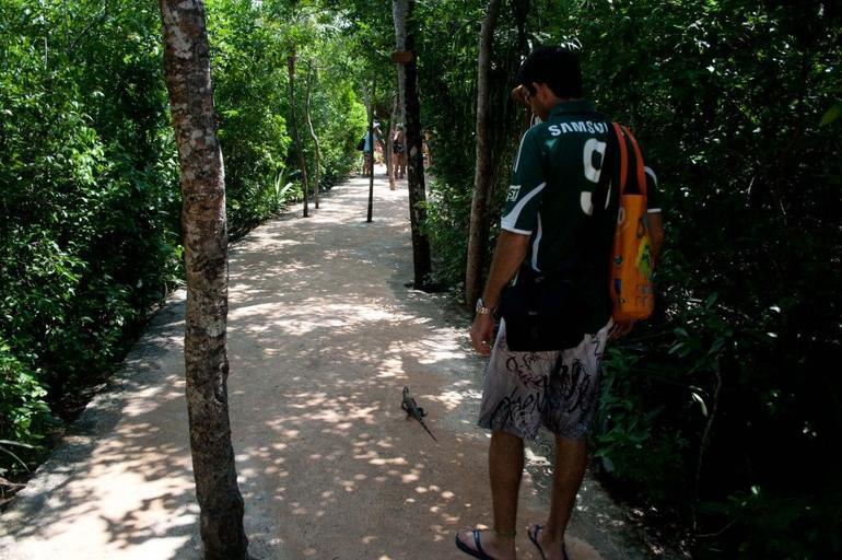 Xel-Ha All Inclusive Day Trip from Cancun - Cancun