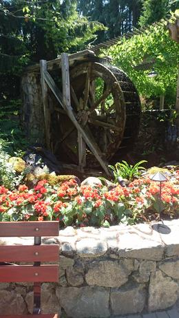 Butchart Gardens Tour from Victoria, Rosane - July 2017