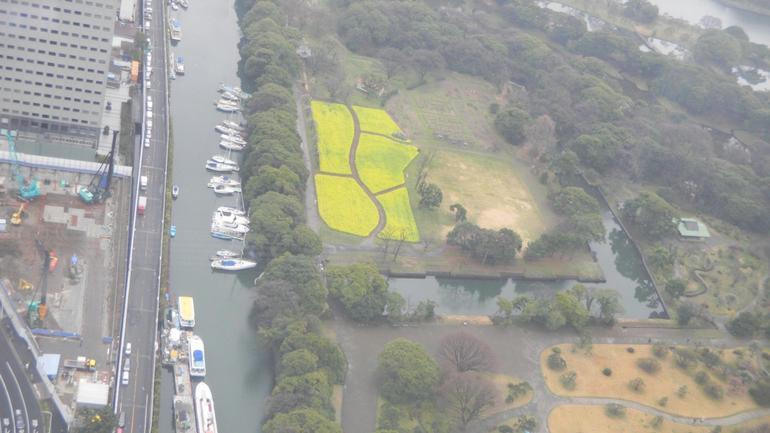 Chinzan-So Gardens - Tokyo