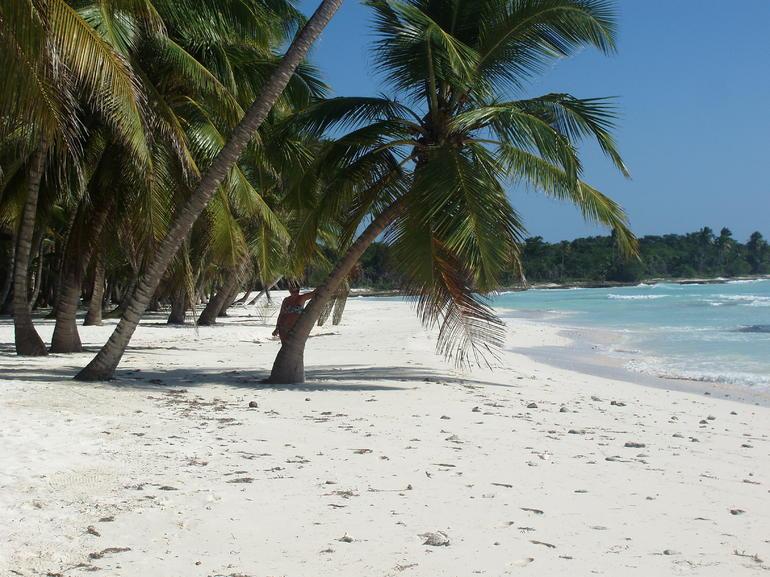 Deserted coastline - Punta Cana