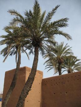 Walls of the Medina in Marrakech. - February 2010
