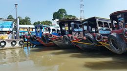 The many faces of the tourist ferries on the Mekong Delta. , Michael K - December 2015