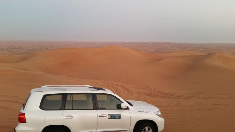 Sunrise Desert Safari with Falcon show & Picnic Breakfast photo 15