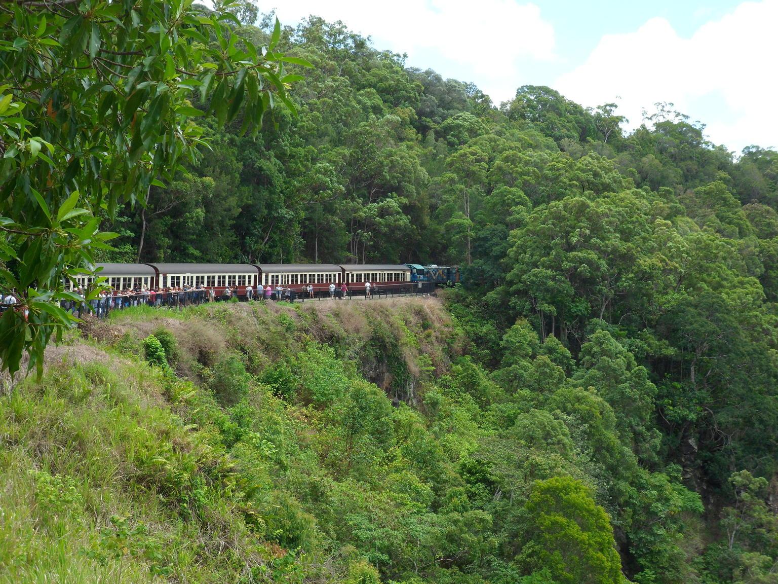 MÁS FOTOS, Evite las colas: ferrocarril panorámico de Kuranda, en clase Gold, y teleférico Skyrail sobre la selva tropical