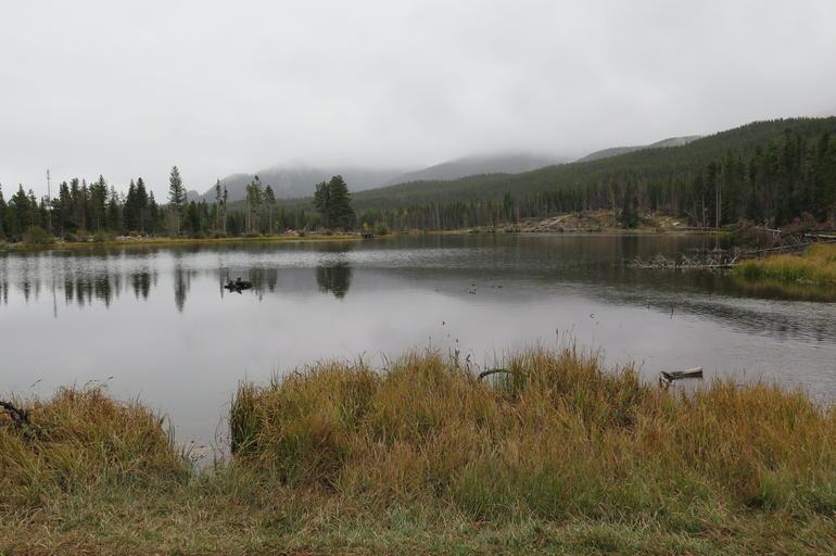 Discover Rocky Mountain National Park from Denver or Boulder