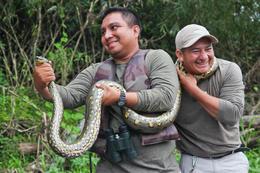 Anaconda! - December 2013