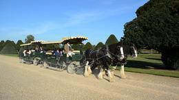 Hampton Court Palace, Graham Walker - October 2011