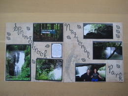 This is my scrapbook pages of photos I took on our recent trip to Springbrook National Park - The waterfall, over millions of years broke through the Basalt Rock to now flow through the cave beneath ... , Liz - April 2011
