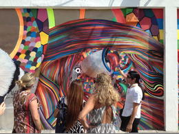 Tour guide showing Wynwood Art - May 2014