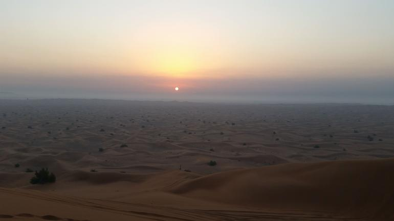 Sunrise Desert Safari with Falcon show & Picnic Breakfast photo 14