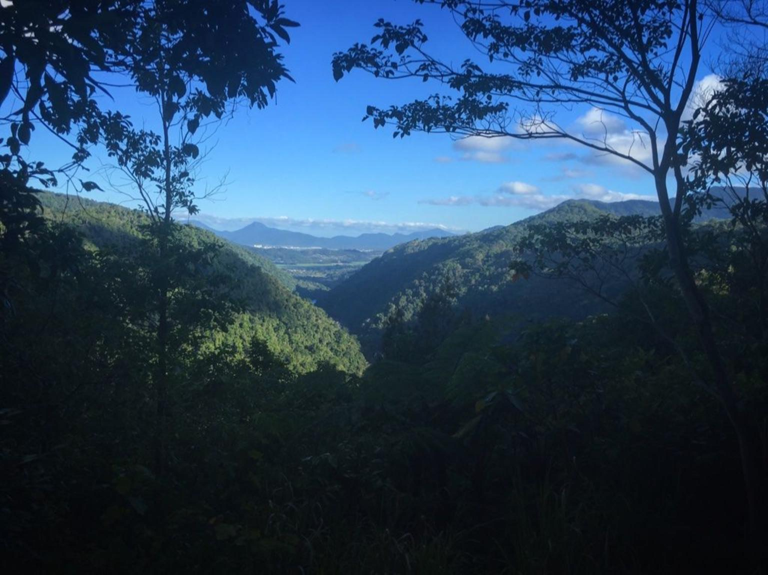 MÁS FOTOS, Barron Gorge and Kuranda National Park Half Day Rainforest and Waterfall 4WD Tour from Cairns