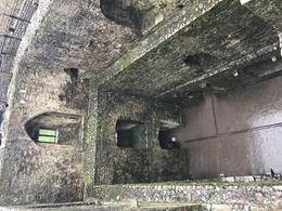 Blarney Castle, view from top , kulmomma3 - February 2017