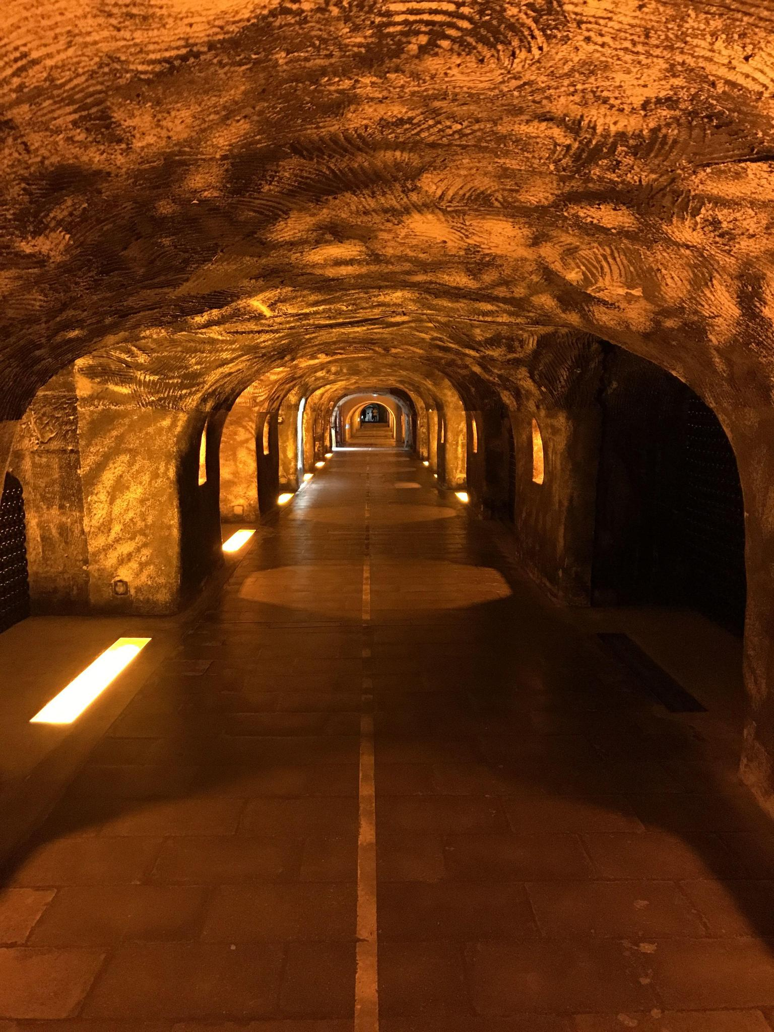 MAIS FOTOS, Champagne Area Small Group Day Trip with Cellar Visits & Tastings from Paris