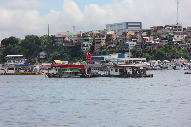 Rio Negro Cruise from Manaus to the Amazon River photo 25