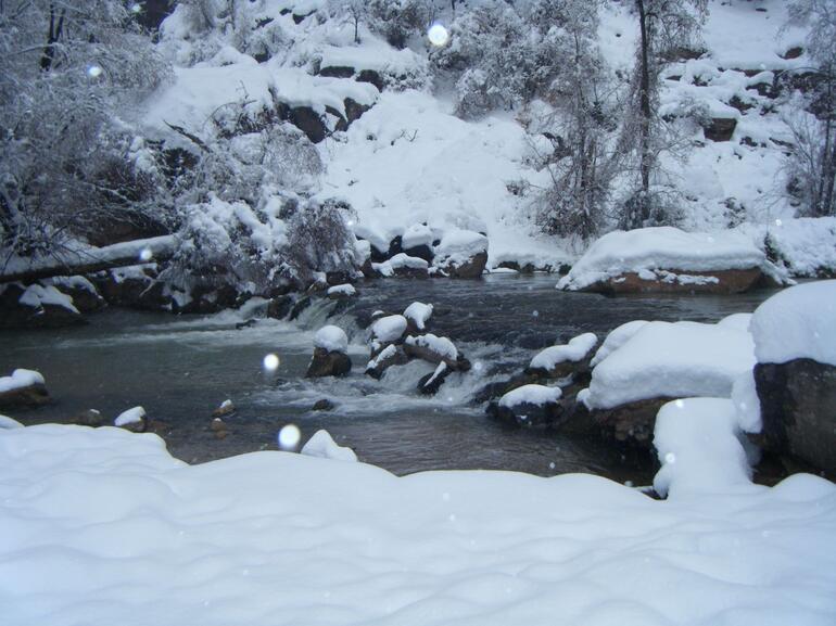 Zion & Snow! - Las Vegas