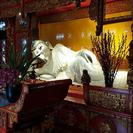 All Inclusive Amazing Shanghai City Highlights Private Day Tour, Shanghai, CHINA