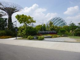 Gardens by the Bay and Marina Sands , John K. - February 2015
