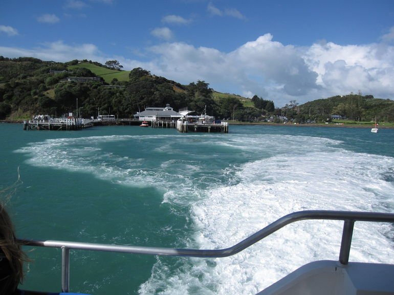 Waiheke Island: Zipline and Island Small Group Day Tour from Auckland photo 19