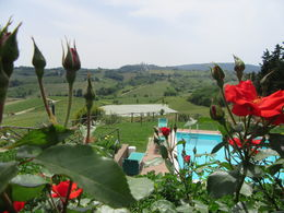 We ate lunch at a beautiful farm overlooking San Gimignamo! The food was amazing, the wine was spectacular, and the view was breathtaking. , Mandi - June 2015