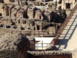 Colosseum , Sandra C - August 2017