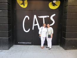 Night at Cats Neil Simon Broadway Theatre , munizlilia - July 2016