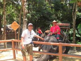 Giving my Elephant a pat to thank it :) , Jeffrey D - April 2011