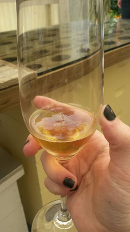 Tasting sparkling mead (the only kind in the world!) at Heidrun Meadery, Emily G - April 2015