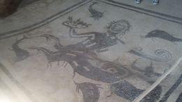 Representation of a sea deity on the floor of a bath chamber , Elizabeth F - August 2015