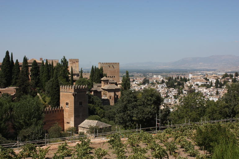 Alhambra Tour and Granada Hammam - Granada