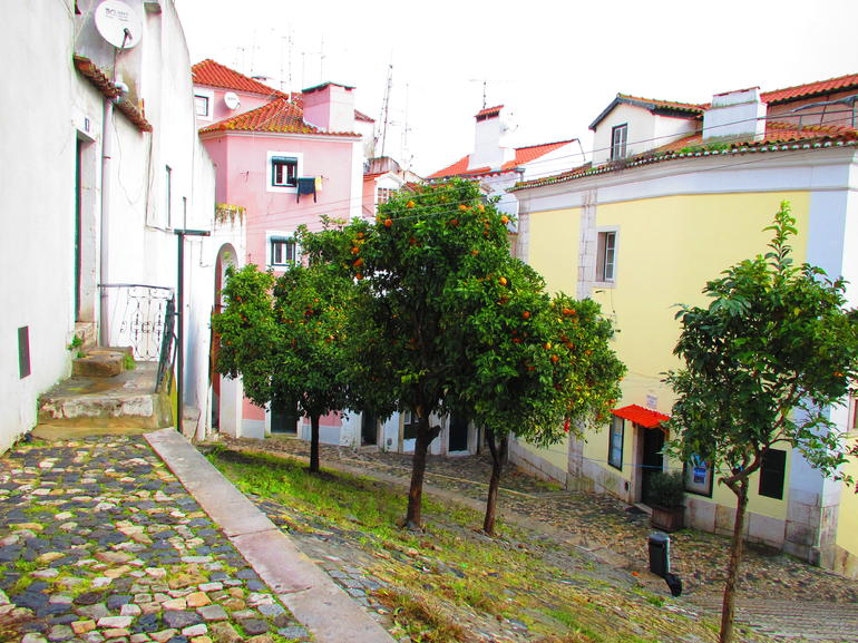 Charming back alleys - Lisbon
