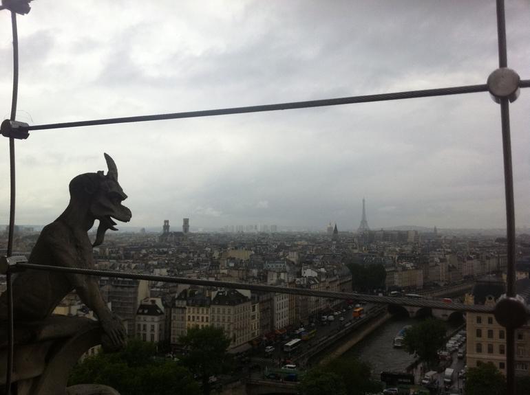 Notre-Dame Paris - Paris