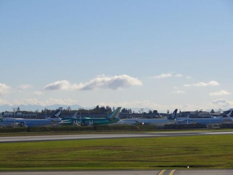 Rows of planes - Seattle