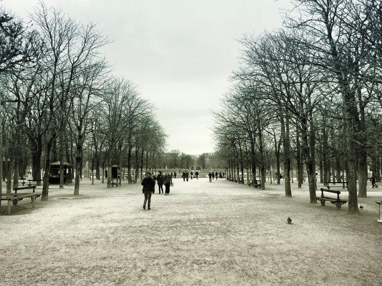 Lonely Planet Experiences: Paris Food & Drink Tour Of Saint-Germain