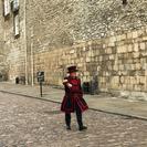 Excursão a pé Royal London incluindo acesso antecipado para a Torre de Londres e para a Troca da Guarda, Londres, REINO UNIDO