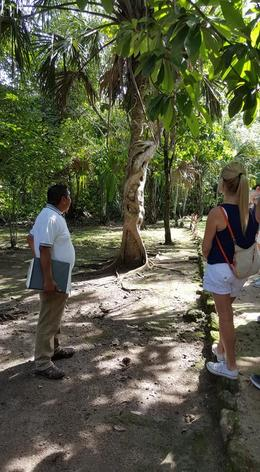 tour guide Juan Carlos explaining the history of this tree , joanne f - October 2017