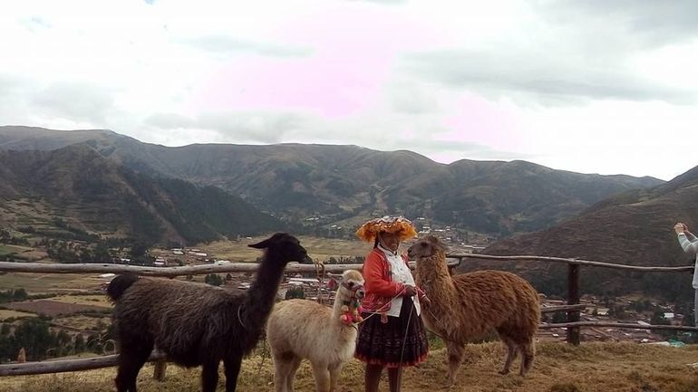 Sacred Valley of the Incas, Pisac, Awanacancha & Ollantaytambo Tour photo 24