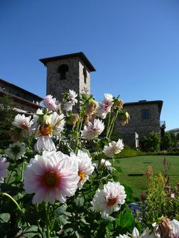 This was a very posh winery with an Italian theme to their buildings which were beautiful, Jon C - September 2010