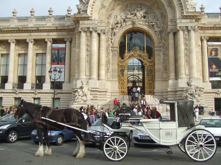 Romantic Horse and Carriage Ride through Paris - Paris