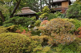 One of my favorite stops on the San Francisco bus tour was the Japanese Tea Garden. , Daniel R - September 2014