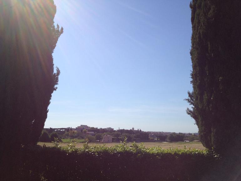 View through the trees - Rome