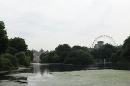 St James Park , Jessica H - July 2017