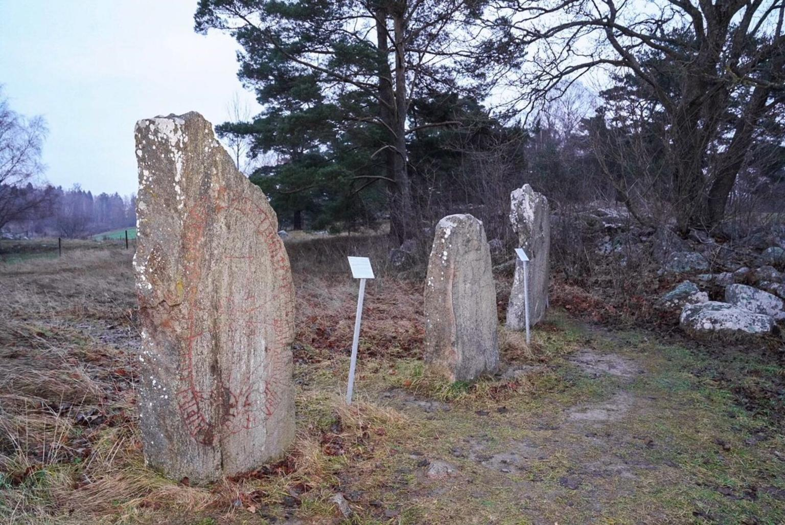 MAIS FOTOS, Private Tour: Viking History Trip from Stockholm Including The Runic Kingdom