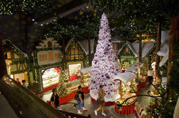 It's Christmas year-round in the Kathe Wohlfarht Christmas shop and museum. This place is amazing and a must-see while in Rothenburg! It's like the magic of Christmas in a store. But forego the ... , Amanda S - July 2014